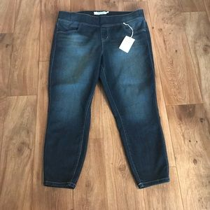 TORRID NWT Skinny Ankle Lean Jeans Pull On size 2